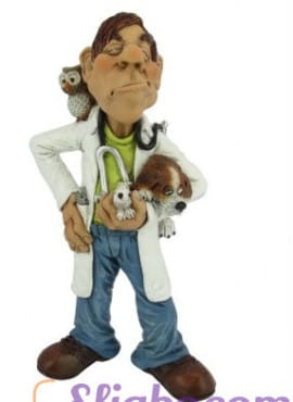 Statuina caricatura Veterinario